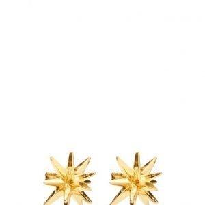 Gaia Jewels Half Star korvakorut