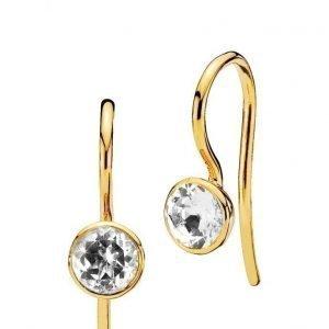 Izabel Camille Dot Earrings korvakorut