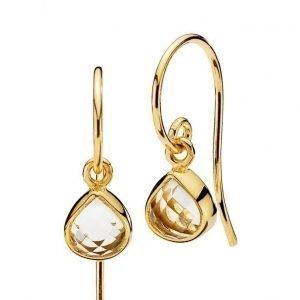 Izabel Camille Fame Earrings korvakorut