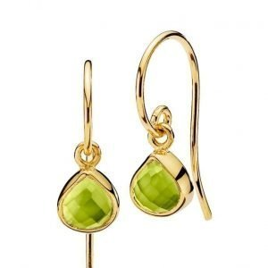 Izabel Camille Fame Earrings korvakorut