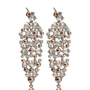 LILY AND ROSE Colette Earrings korvakorut