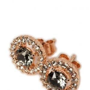 LILY AND ROSE Miss Miranda Earrings Black Diamond korvakorut