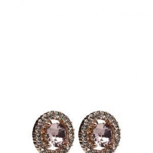 LILY AND ROSE Miss Miranda Earrings korvakorut