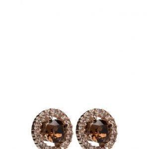 LILY AND ROSE Miss Mirande Earrings korvakorut