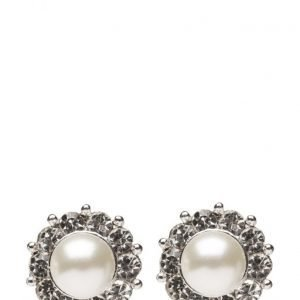 LILY AND ROSE Miss Sofia Pearl Earrings Creme korvakorut