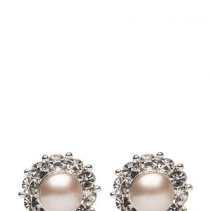 LILY AND ROSE Miss Sofia Pearl Earrings Powder Almond korvakorut