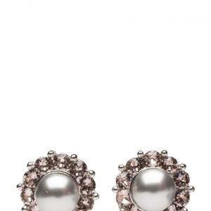 LILY AND ROSE Miss Sofia Pearl Earrings Vintage Grey korvakorut