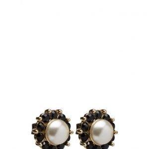 LILY AND ROSE Miss Sofia Pearl Earrings korvakorut